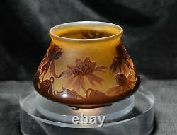 D'ARGENTAL French Cameo Glass Vase
