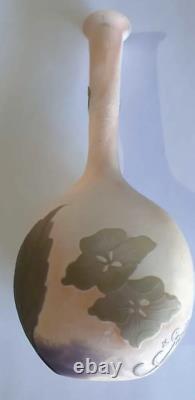 Galle Acid Cut Four Colour Cameo Hydrangeas Vase