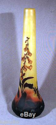 Large And Mint Cond. 31 H Daum Nancy 4 Color Cameo Glass Vase