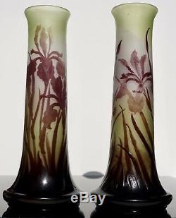 Pair Emile Galle Art nouveau Cameo Iris Vases
