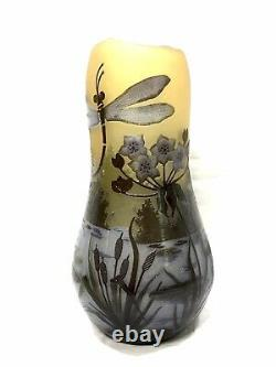 Possible Galle Cameo Art Glass Vase, Dragonfly Iris Over Pond Signed, 12 Tall