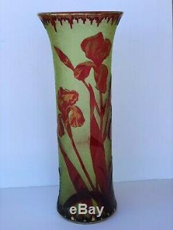 Rare Large Baccarat Cameo Glass Ruby Cut To Yellow Vaseline Etched Irises Vase