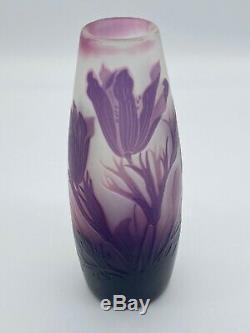 Signed St. Louis Nancy French Cameo Art Nouveau Glass Vase c. 1900